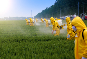 Farmers in yellow chemical-resistant coveralls spraying pesticide on a field