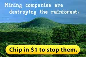 Mining companies are destroying the rainforest. Chip in just $1 to stop them.