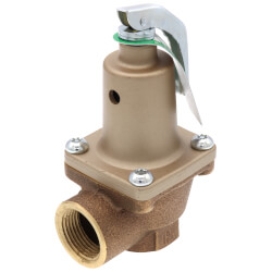 "3/4"" 174A Relief Valve (50lb) Product Image"