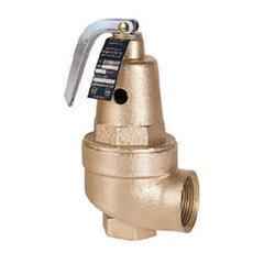 "3/4"" FNPT x 1"" FNPT RVW61 2,089,000 BTU Hot Water Pressure Relief Valve, 80 psi Product Image"