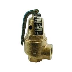 "1-1/2"" FNPT RVW60 11,871,000 BTU Capacity Bronze Relief Valve (150 psi) Product Image"