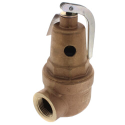 "1"" FNPT RVW60 1,956,000 BTU Bronze Hot Water Relief Valve (50 psi) Product Image"