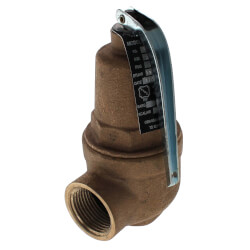 "3/4"" FNPT x 1"" FNPT RVW61 1,418,000 BTU Bronze Hot Water Relief Valve (50 psi) Product Image"