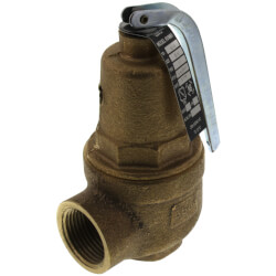 "3/4"" FNPT x 1"" FNPT RVW61 1,977,000 BTU Bronze Hot Water Relief Valve (75 psi) Product Image"
