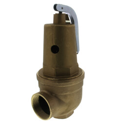 "1-1/2"" FNPT x 2"" FNPT RVW61 3,696,000 BTU Bronze Hot Water Relief Valve (30 psi) Product Image"