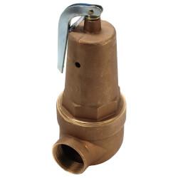 "2"" FNPT x 2-1/2"" FNPT RVW61 6,091,000 BTU Bronze Hot Water Relief Valve (30 psi) Product Image"