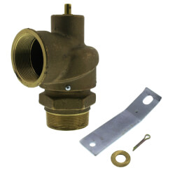 "2"" MNPT x 2"" FNPT RVS12 2,500 LBS/HR Capacity Low Pressure Relief Valve (15 psi) Product Image"