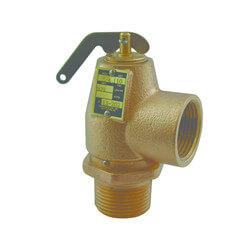 "1"" MNPT x 1"" FNPT RVS13 643 LBS/HR Low Pressure Steam Safety Valve (10 psi) Product Image"