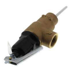 """1-1/4"""" MNPT x 1"""" FNPT Commercial ASME T&P Relief Valve (4"""" Element, 150 psi) Product Image"""