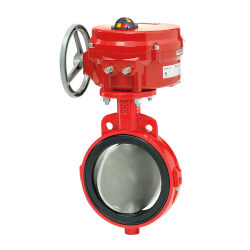 "6"" S20-126, SS, Butterfly Valve Product Image"