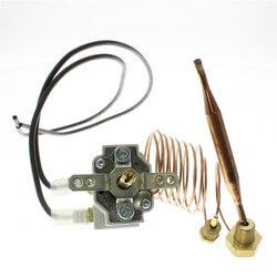 Aquastat/Thermostat Product Image