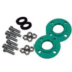 """2"""" FNPT Cast Iron Flange Kit for Top S 2 x 35 Product Image"""
