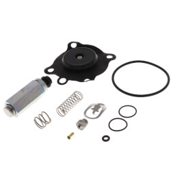 Valve Repair Kit<br>for 8210 Series Product Image