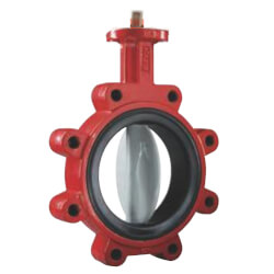 """8"""" 175# S31 Butterfly Valve Product Image"""