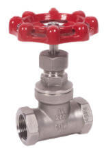 "1/2"" Stainless Steel Threaded Globe Valve Product Image"
