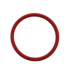 O-Ring for Steam Canister Product Image