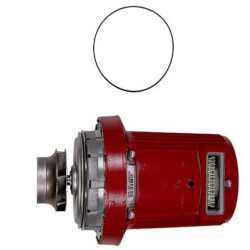 Pump Head for UPS50-80/2 3x208-230V 60Hz Product Image
