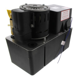 Heavy Duty High Temp Industrial Condensate Pump, 50 Ft Shutoff (1/5 HP, 460V) Product Image