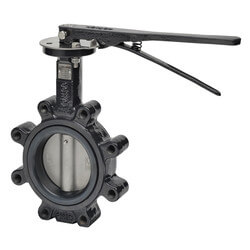 "2-Way 4"" Butterfly Valve Assembly Product Image"