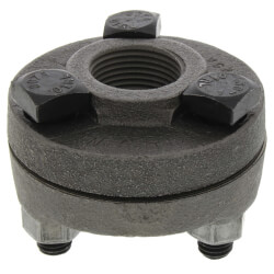 "1/2"" Black Cast Iron Steam Flange Union w/ Gasket Product Image"