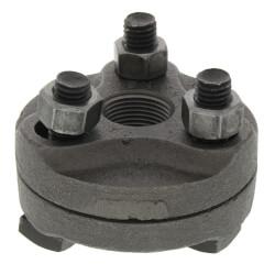 "3/4"" Black Cast Iron Steam Flange Union w/ Gasket Product Image"