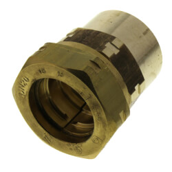 """3/4"""" Straight Fitting 3/4"""" Female NPT Product Image"""