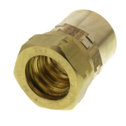 """1/2"""" Straight Fitting x 1/2"""" Female NPT Product Image"""