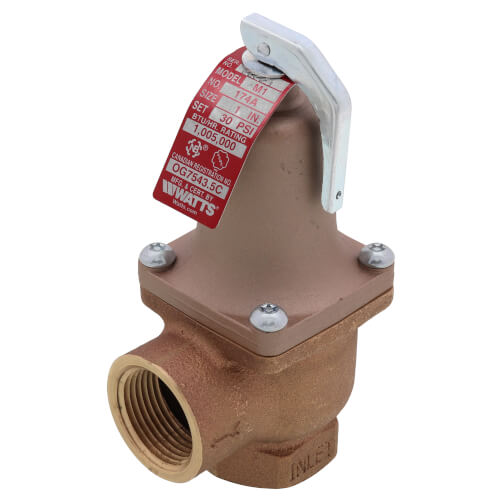 """1"""" 174A Relief Valve (30lb) Product Image"""