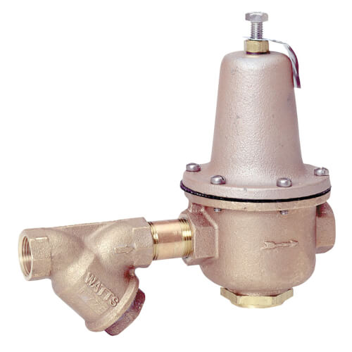 """2"""" LF223S Lead Free High Capacity Pressure Valve w/ Strainer Product Image"""