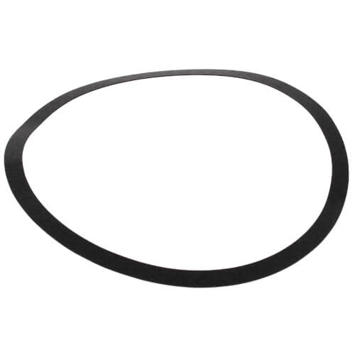 Body Gasket for S69-BF1 Pump Product Image