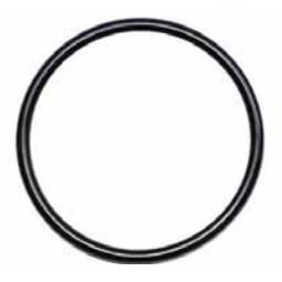 "4"" Leak Detect EPDM O-Ring Product Image"