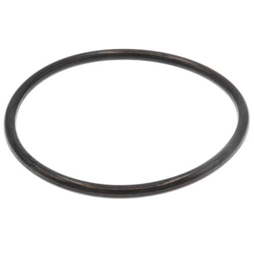 "3"" Leak Detect EPDM O-Ring Product Image"