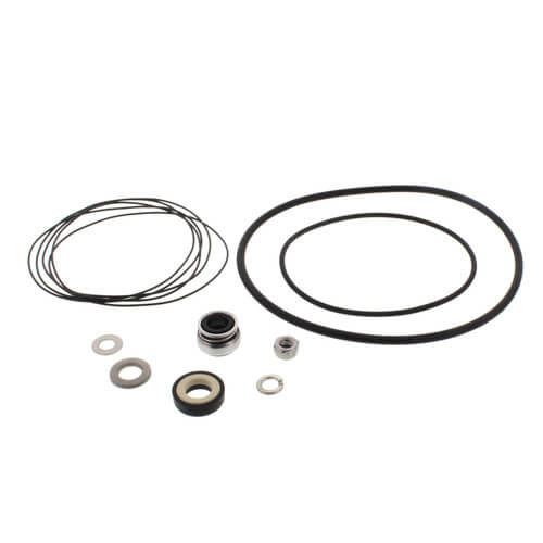 Standard Seal Kit for VersaFlo Pumps Product Image