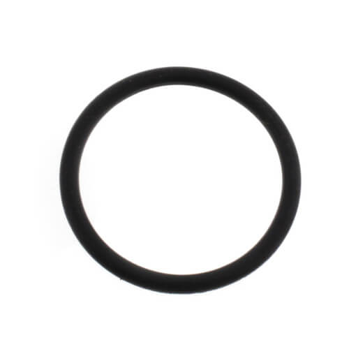"""Replacement O-Ring for 1"""" BSP Connections Product Image"""
