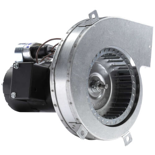 1-Speed 1/25 HP 3200 RPM Draft Inducer Blower Motor (230V) Product Image