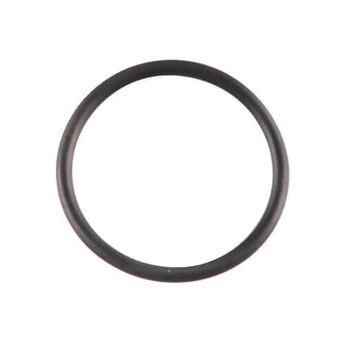 Replacement O-ring for insert (R25) Product Image