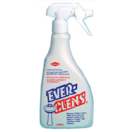 Everclens Hard Surface Cleanser (500ml) Product Image