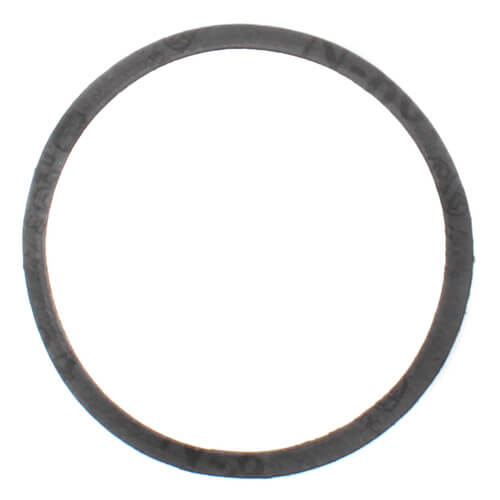 Front Bearing Gasket for Series 100 Pumps Product Image