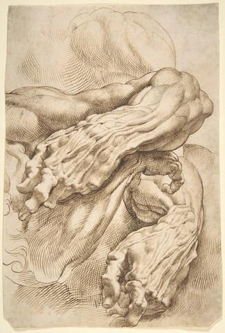 PIERRE PAUL RUBENS  «études anatomiques (Avant Bras)»