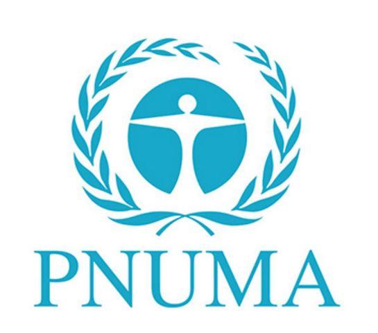 Programa de las Naciones Unidas para el Medio Ambiente (PNUMA),