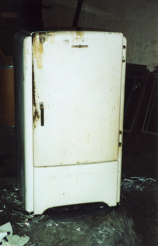 The design of most appliances also made them difficult and expensive to repair and many devices were often discarded after a short period of time. Large numbers of old home appliances began to pile up in landfill areas.