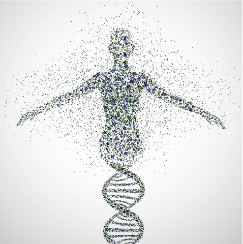 Human Genome's Fully Developed