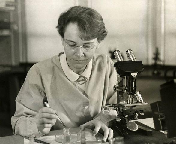 Barbara McClintock describes transposons