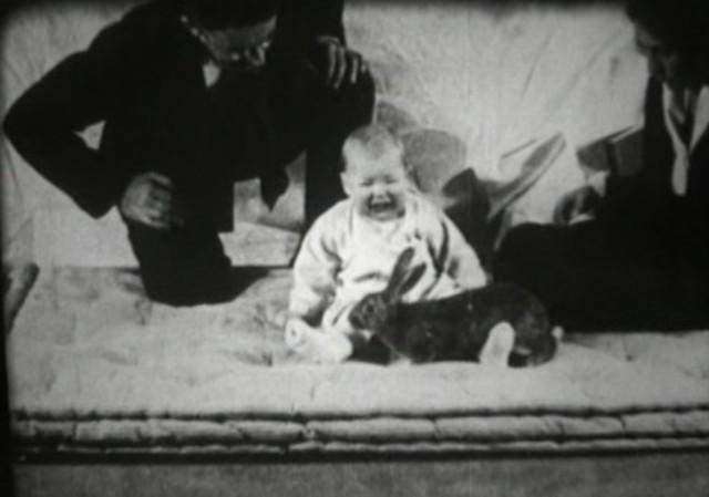 """""""Little Albert"""" Experiment"""