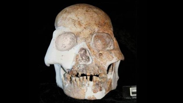 Homo Denisova fossil is discovered