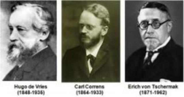 HUGO, CARL y ERIC