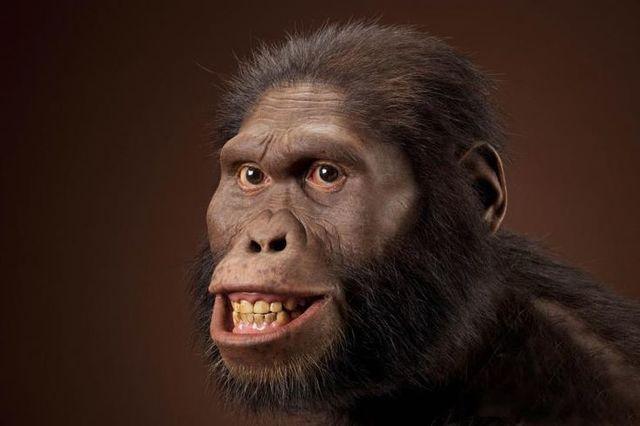 ás 18:17 h naceu o australopitecus.