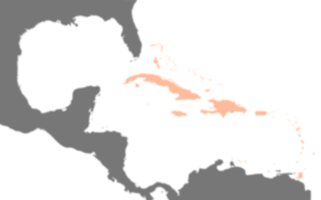 Conjunto de las Antillas