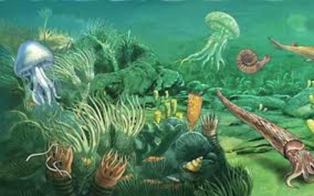 Comienzo del Paleozoico