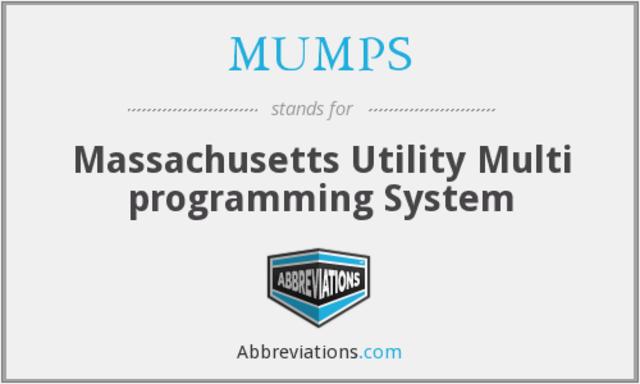 Discusión sobre el uso de computaodras en salud y lenguaje de programación MUMPS